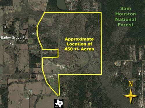 Calfee Ranch : Montgomery : Texas