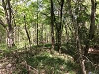Highway 471 Dartigo Creek Tract : Verda : Winn Parish : Louisiana