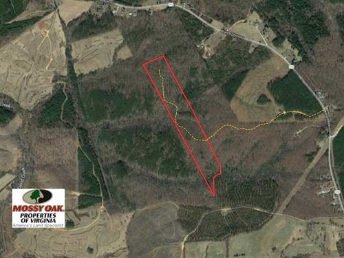 31 Acres of Hunting Land For Sale : Appomattox : Virginia