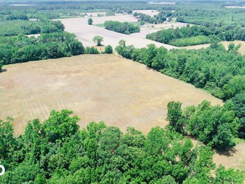 Whitakers Farm Land And Timber : Whitakers : Edgecombe County : North Carolina
