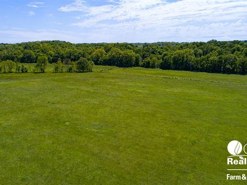 225 Acres Ranch/River, Stockton : Stockton : Cedar County : Missouri