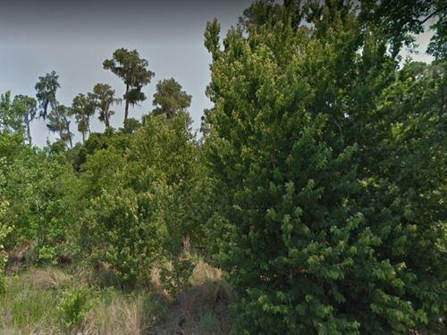 Polk County, Fl $60,000 : Haines City : Polk County : Florida