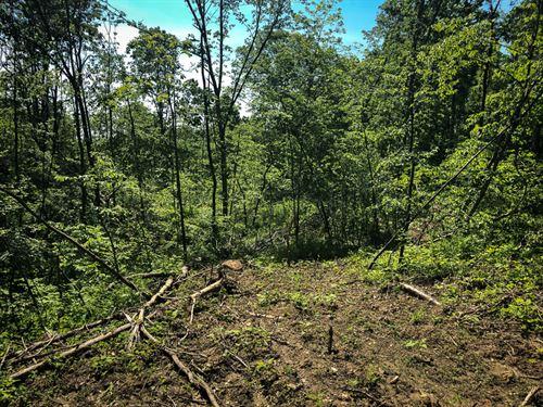 Robins Rd, 23 Acres : Senecaville : Guernsey County : Ohio