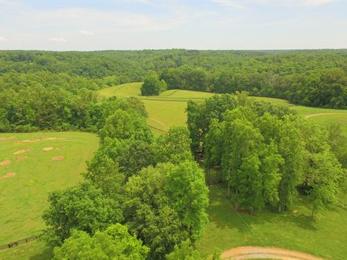 Spectacular Countryside, 146 Acres : Franklin : Williamson County : Tennessee