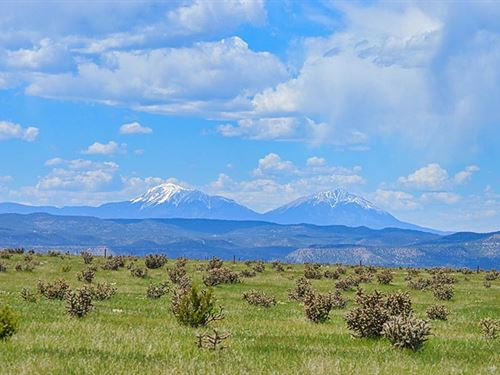Patton Arroyo Ranch For Sale : Trinidad : Las Animas County : Colorado