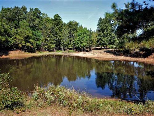 160.25 Acre, Cherokee Co, Farm : New Summerfield : Cherokee County : Texas