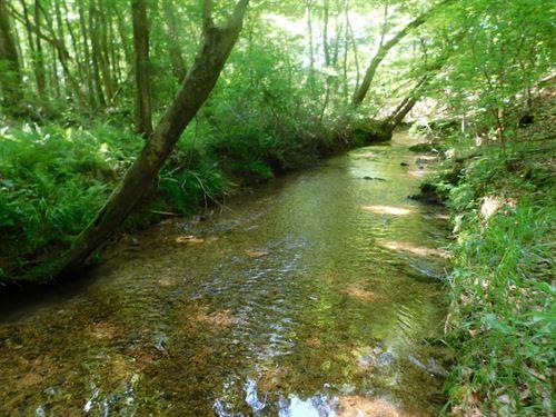 Cabin Woods Tn, Acreage, Creek : Cypress Inn : Wayne County : Tennessee
