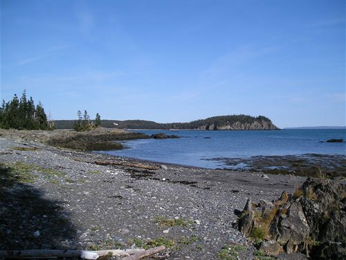 Bold Coast Ocean Front Lots : Trescott Township : Washington County : Maine
