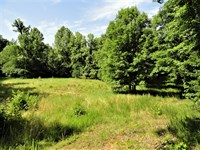 Little River Tract : Clinton : Laurens County : South Carolina