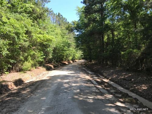 36 Ac, Timberland & Hunting Tr : Junction City : Union County : Arkansas