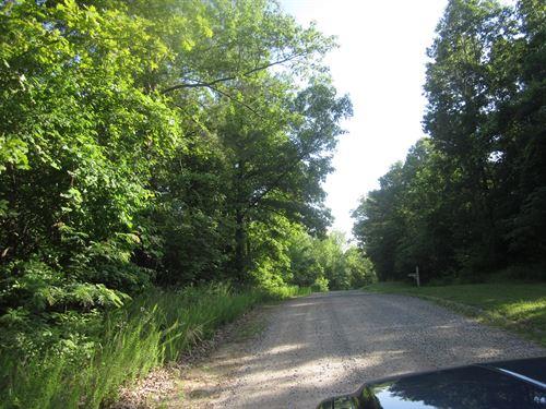 Acreage Mountain Home, Arkansas : Mountain Home : Baxter County : Arkansas