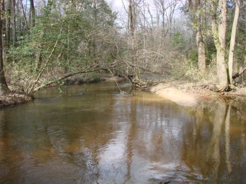 43 Acre Hunting Paradise With Creek : Ideal : Macon County : Georgia