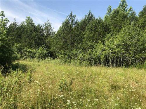 15 Acres of Incredible Hunting : Bald Knob : White County : Arkansas