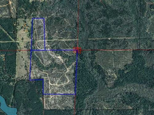 Two Parcels Totaling 98 Acres in : Clayton : Barbour County : Alabama