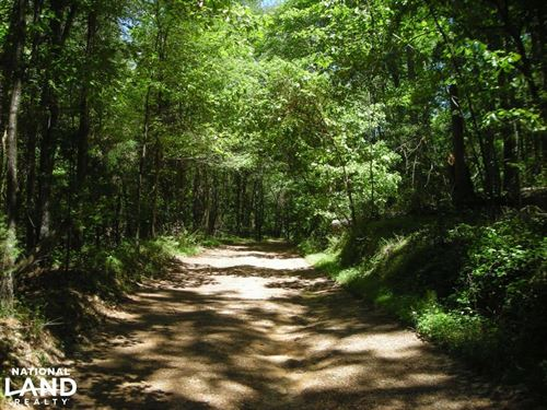 20 Acres of Potential Homesite/Hunt : Lyerly : Chattooga County : Georgia