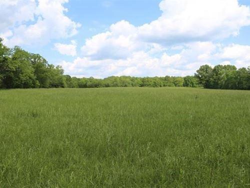 162 Acres M/L Amazing Farm Land : Caulfield : Ozark County : Missouri
