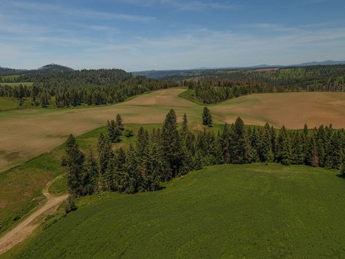 Farm Ranch / Hunting Land Kamiah : Kamiah : Idaho County : Idaho