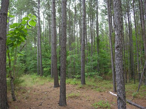 7 Acres & 25 Acres Near The Lake : Tignall : Wilkes County : Georgia