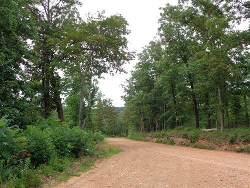 Northwest Arkansas-40 Acres : Huntsville : Madison County : Arkansas
