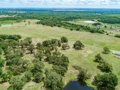 Tract 4 Fm 3060, Midway, Tx : Midway : Madison County : Texas