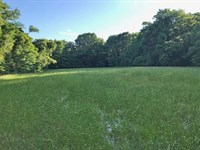 Carlton River Tract : Jackson : Clarke County : Alabama
