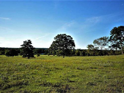 40 Acres, Nacogdoches Co, Centra : Nacogdoches : Texas