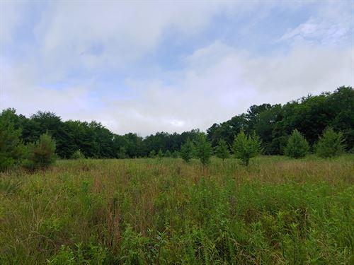 Fields, Streams, And Hardwood Hills : Elberton : Elbert County : Georgia