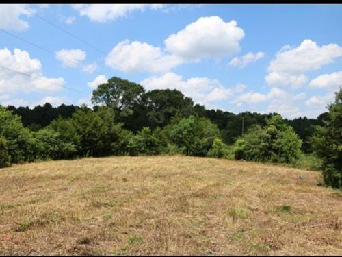 12.1 Acres In Leake County In Walnu : Walnut Grove : Leake County : Mississippi