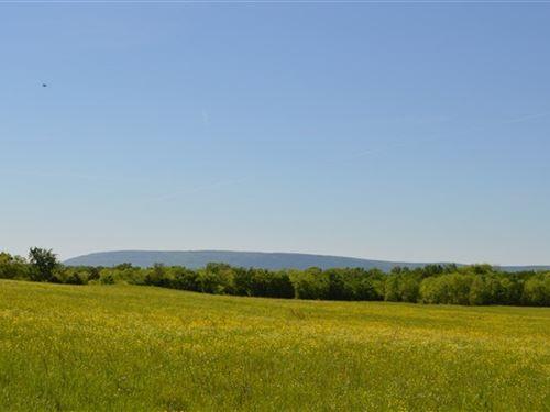 Kiamichi River Farm 120 Acres : Talihina : Le Flore County : Oklahoma