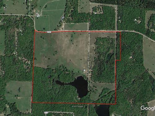 312 Ac For Recreation Or Investment : Ben Wheeler : Van Zandt County : Texas