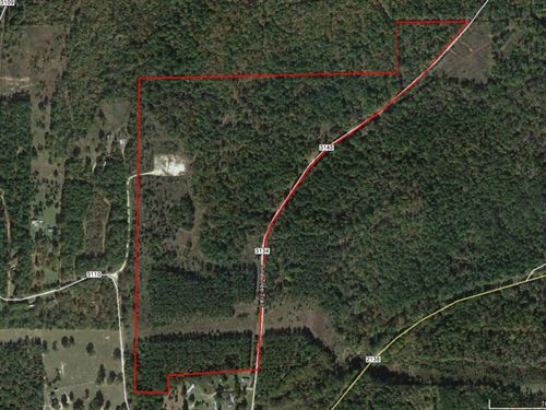 78 Ac With A Lot Of Road Frontage : Jacksonville : Cherokee County : Texas