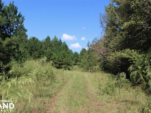 Wheless Drive Retreat : Thomson : McDuffie County : Georgia