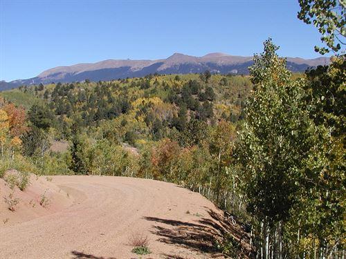A Natural High : Cripple Creek : Teller County : Colorado