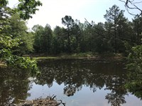 Hunting & Recreational Land : Leslie : Searcy County : Arkansas