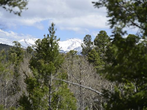 Outstanding 7.4 Acre Alpine Lot : San Luis : Costilla County : Colorado
