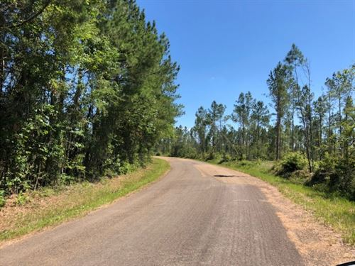 7.66 Acres In Npsd : Summit : Pike County : Mississippi
