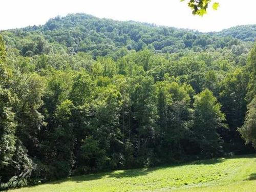 Nature, Unspoiled, Surrounded by : Cullowhee : Jackson County : North Carolina