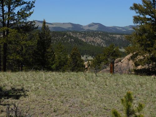 Beautiful 20 Acres : Florissant : Teller County : Colorado