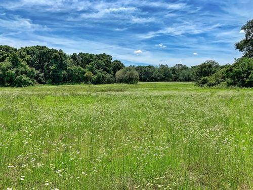 78 Acres Home, Archer, Alachua : Archer : Alachua County : Florida