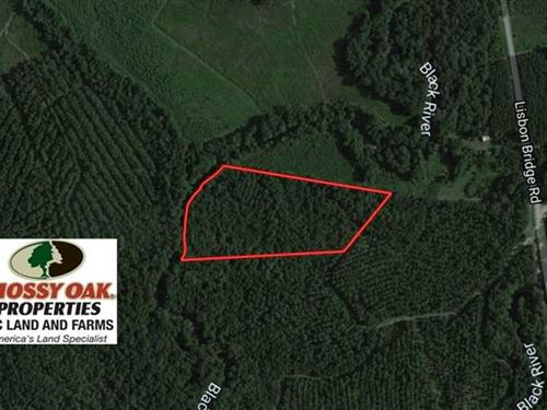 Reduced, 12.17 Acres of Timber : Garland : Sampson County : North Carolina