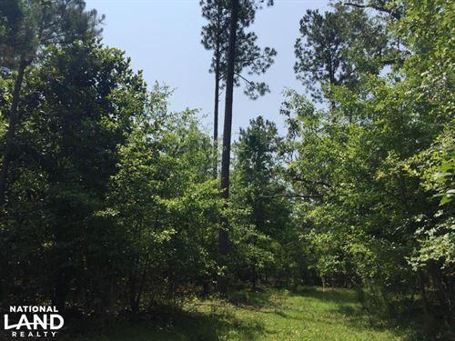 White Oak Mixed Use Tract Near Lake : Summerton : Clarendon County : South Carolina
