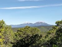 Wooded Mountain Land With Cabin : Trinidad : Las Animas County : Colorado