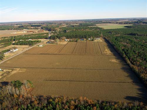 NC Farmland Pasquotank County-Just : Elizabeth City : Pasquotank County : North Carolina