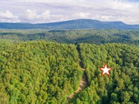 Private Acreage Near Ocoee River : Reliance : Polk County : Tennessee