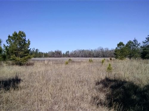 26.35 Acres, Kershaw County, Sc : Kershaw : South Carolina