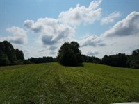 131+ Ac, Creeks, Springs, Pond : Red Boiling Springs : Clay County : Tennessee