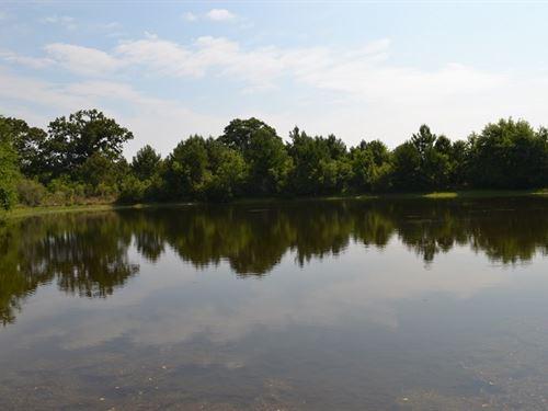 The Mock Farm : Eastman : Dodge County : Georgia