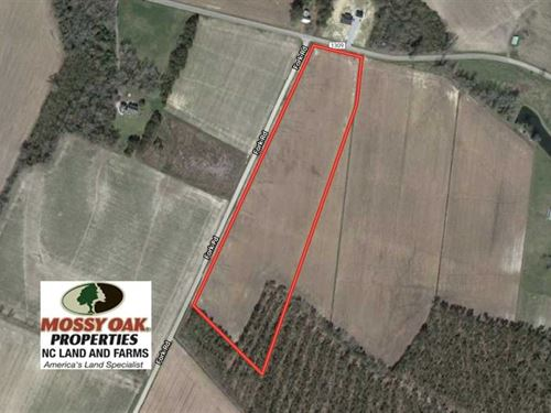 13 Acre Farm For Sale in Chowan CO : Tyner : Chowan County : North Carolina