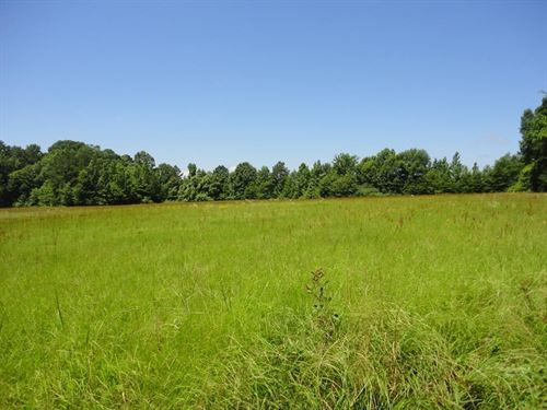 Land 8 Acres Brookhaven Lincoln : Brookhaven : Lincoln County : Mississippi