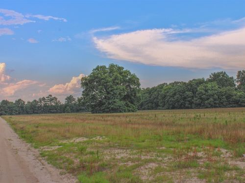 Marlboro County Sc Tillable Acreage : Wallace : Marlboro County : South Carolina